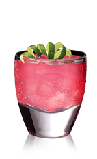 The X-Rita is an exotic variation of the classic Margarita cocktail. A pink colored drink made from X-Rated Fusion liqueur and Espolon silver tequila, and served over ice in a rocks glass.