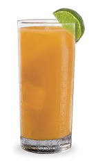 The Apple Colada is an orange drink made from DeKuyper Tropical Coconut schnapps and apple juice, and served over ice in a highball glass.
