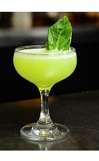 The Basil Gimlet cocktail recipe is a green colored drink made from VeeV acai spirit, basil juice and simple syrup, and served in a chilled cocktail glass.