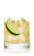 Citrus Flying Dragon Cocktail Recipe With Picture