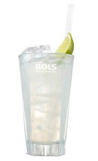 The Dutch and Stormy is a refreshing clear colored drink made from Bols Genever, ginger beer and lime, and served over ice in a highball glass.