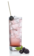 The Incredible Ginger is a refreshing purple summer drink made from Mozart Dry chocolate liqueur, Monin blackberry syrup, ginger and tonic water, and served over ice in a highball glass with mint and blackberries.