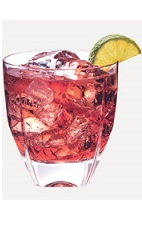 The Oasis Refresher drink recipe is made from Burnett's pomegranate vodka, cranberry juice and lemon-lime soda, and served over ice in a rocks glass.