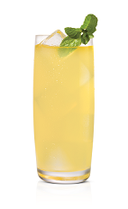 The Vanilla Mosquito drink is made from Stoli Vanil vanilla vodka, vanilla liqueur, pineapple juice, lime juice, mint leaves and agave nectar, and served over ice in a highball glass.