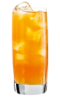 The Apricot Kiss is a tangy orange drink made from Rose's Apricot cordial, vodka and orange juice, and served over ice in a highball glass.