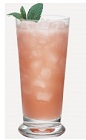 The Bloody Blossom is a fruity and less sinister version of the classic Bloody Mary cocktail. A peach colored drink made from Burnett's vodka, orange juice and tomato juice, and served over ice in a highball glass.