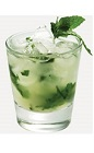 The Citrus Mojito is a fruity change to the classic Mojito cocktail recipe. Made from Burnett's citrus vodka, lime, mint, sugar and club soda, and served over ice in a rocks glass.