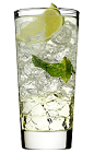 The Classic Mojito is a clear drink made from rum, Rose's mojito cordial, Rose's lime cordial, mineral water, mint and lime, and served over ice in a highball glass.