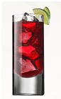 The Cranberry Mist is an exotic red drink perfect for Saint Patrick's Day. Made from Irish Mist whiskey liqueur, cranberry juice and lime, and served over ice in a highball glass.