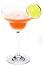 The Disarita Fresh is a peach colored cocktail made from Disaronno liqueur, silver tequila, guava juice and lime juice, and served in a chilled margarita glass.