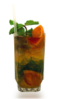The Grapefruit Chili Mojito balances the bitterness of grapefruit with the bite of chili pepper. Made from Don Q rum, lime, grapefruit, sugar, chili pepper, mint and club soda, and served over ice in a highball glass.