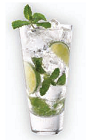 The Herradura Mojito is a Mexican variation of the classic Mojito cocktail. A clear colored drink made from Herradura tequila, agave nectar, lime juice, mint and club soda, and served over ice in a highball glass.