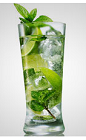 Take your common Mojito to the next level with this great drink recipe. The I Like it Mojito cocktail is made from Flor de Cana rum, lime, mint, club soda and sugar, and served over ice in a highball glass.