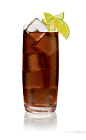 The Salted Kola drink is made from Stoli Salted Karamel vodka, Coke and lemon and lime wedges, and served over ice in a highball glass.